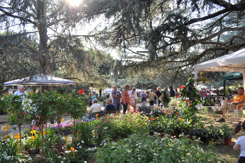 Fiorinfiera – nel Borgo Fiorito, una settimana al via