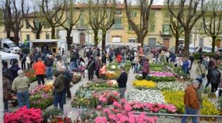 Un successo di colori nei giardini di Fiorinfiera-Nel Borgo fiorito