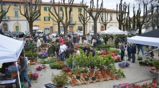 """""""Fiorinfiera"""" trasformerà Borgo San Lorenzo in un giardino"""