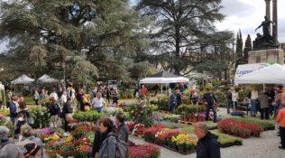 """Ultimi preparativi per """"Fiorinfiera"""" a Borgo San Lorenzo"""
